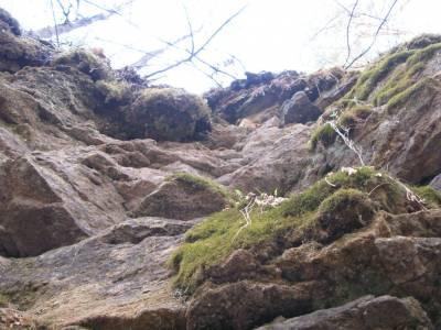 Ичалковский бор и ичалковские пещеры